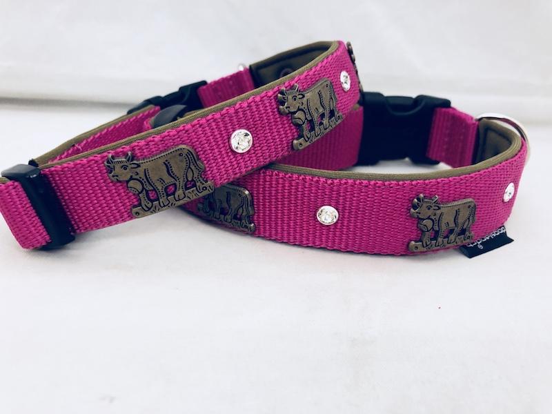 Appenzellerhalsband pink 02