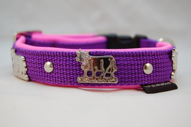 Appenzellerhalsband violett