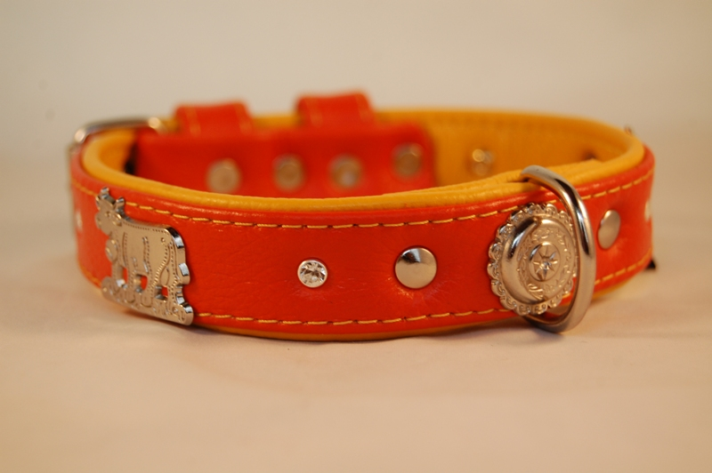 Appenzeller Lederhalsband orange