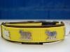 Appenzeller Halsband gelb