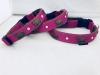 Appenzellerhalsband pink 01