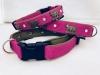 Appenzellerhalsband pink 03