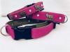 Appenzellerhalsband pink 04
