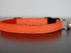 katzenhalsband-orange