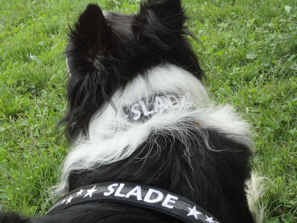 slade-01_0