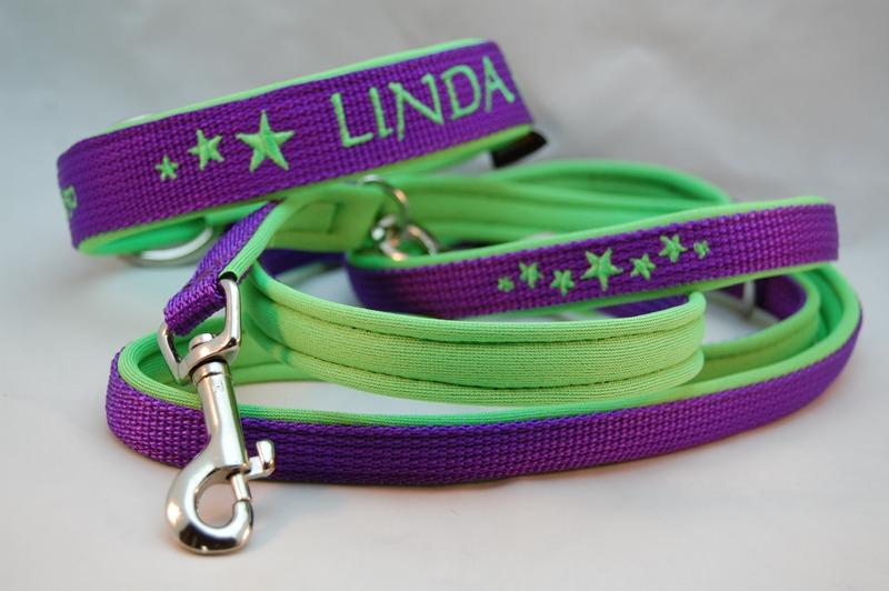 Hundehalsband und Leine violett
