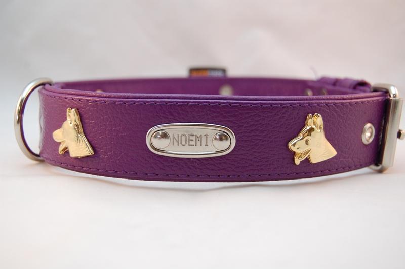 Lederhalsband Schäferhunde