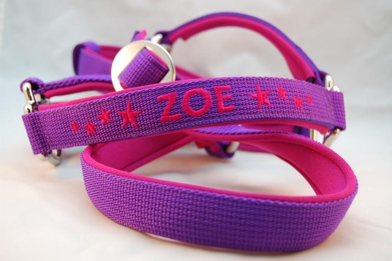 Halfter violett / pink