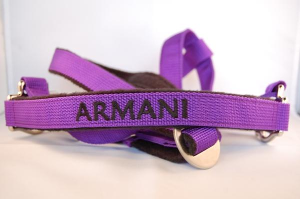 Pferdehalfter-violett