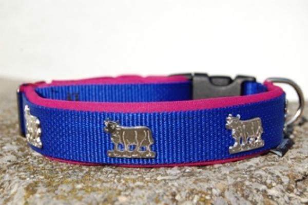 Appenzeller Halsband königsblau