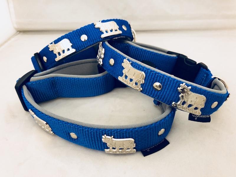 Appenzellerhalsband blau 02