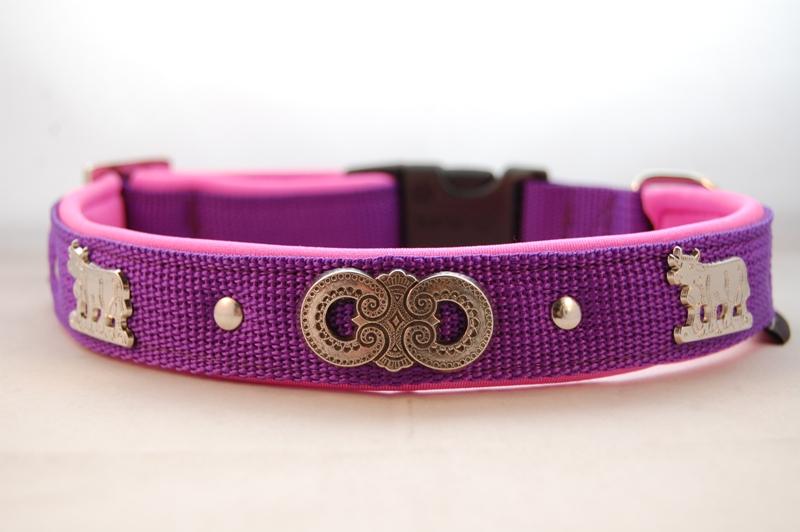 Hundehalsband violett