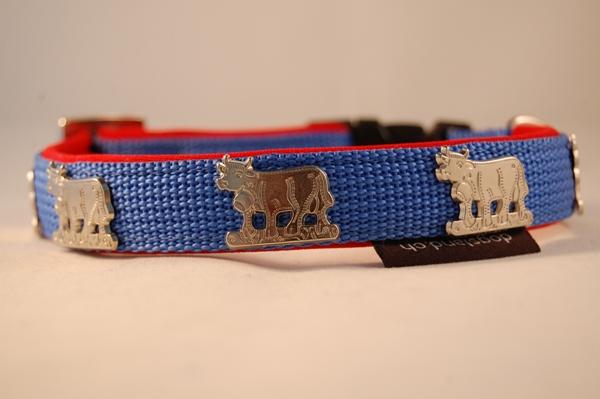 Appenzeller Halsband hellblau
