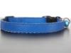 katzenhalsband-blau