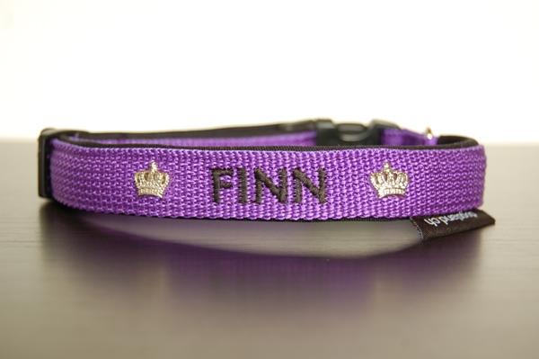 hundehalsband-violett