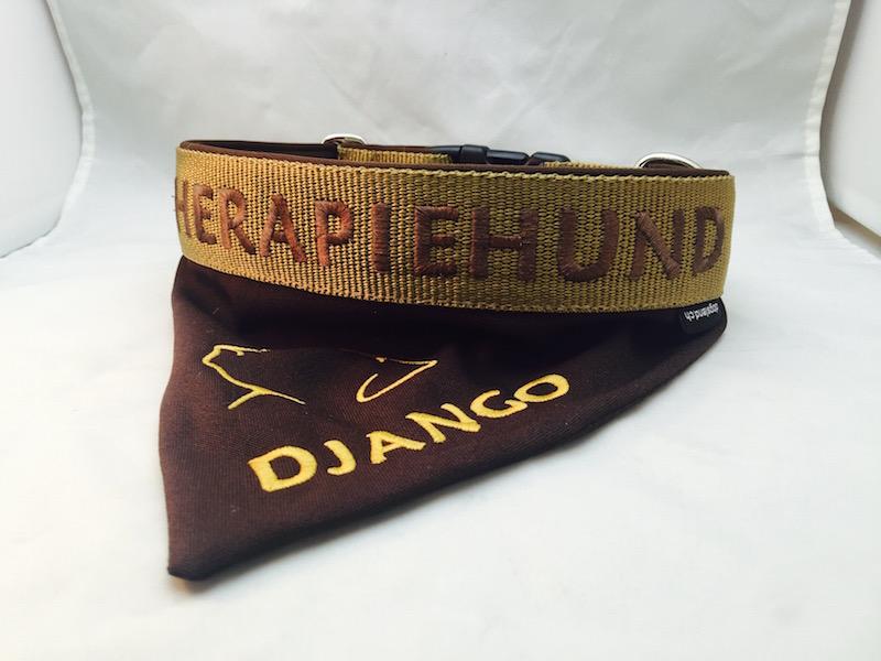 therapiehund-hundehalsband-01