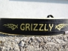 hundehalsband-grizzly