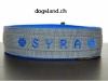 hundehalstband-syra