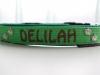 hundehalsband-delilah