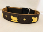Mobile Preview: Appenzeller Hundehalsband braun
